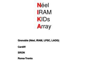 N éel I RAM K IDs A rray Grenoble (Néel, IRAM, LPSC, LAOG) Cardiff SRON Roma-Trento