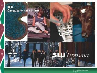 SLU Campusalternativ Ultuna