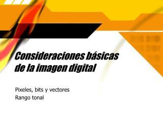 Consideraciones b ásicas  de la imagen digital