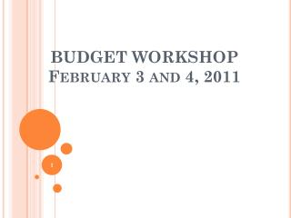 BUDGET WORKSHOP February 3 and 4, 2011