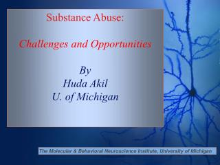 The Molecular & Behavioral Neuroscience Institute, University of Michigan