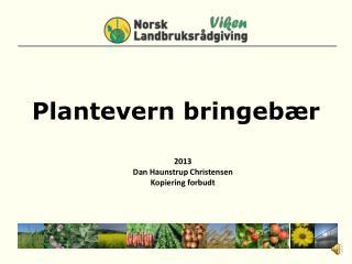 Plantevern  bringebær