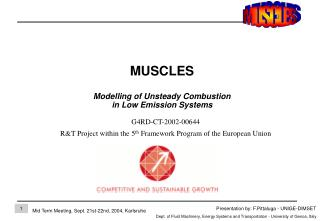 MUSCLES Modelling of Un s teady Combustion  in Low Emission Systems