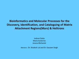 Indrani Datta Maria Gutierrez Jessica Blicharski Mentors :  Dr. Shailesh Lal and Dr. Gautam Singh