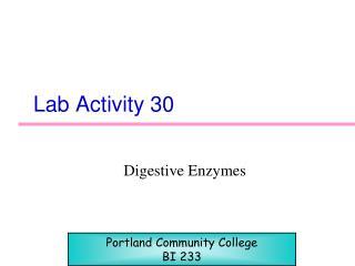 Lab Activity 30