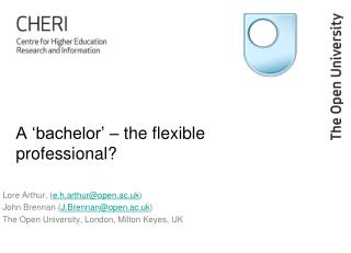 A 'bachelor' – the flexible professional?