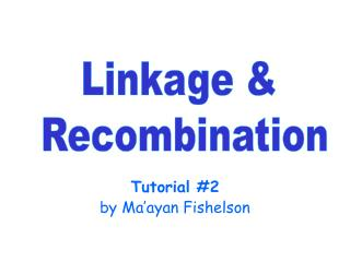 Tutorial #2 by Ma'ayan Fishelson