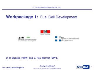 Workpackage 1:   Fuel Cell Development