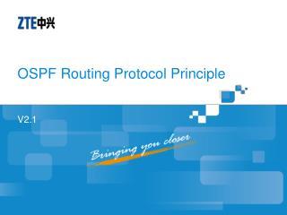 OSPF Routing Protocol Principle