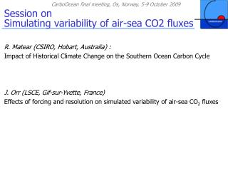 Session on  Simulating variability of air-sea CO2 fluxes