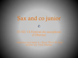 Sax and  co  junior