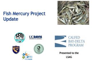 Fish Mercury Project Update