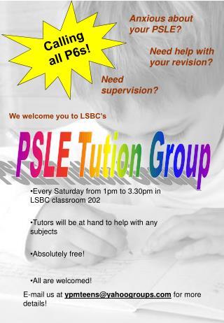 PSLE Tution Group