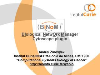 BI ological  N etw O rk  M anager  Cytoscape plugin