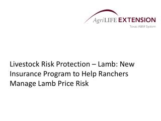 Livestock Risk Protection – Lamb: New Insurance Program to Help Ranchers Manage Lamb Price Risk
