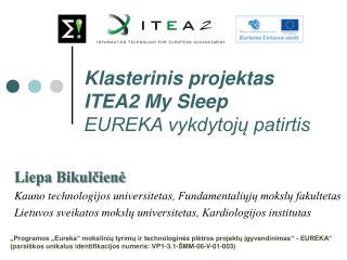Liepa Bikulčienė Kauno technologijos universitetas , Fundamentaliųjų mokslų fakultetas