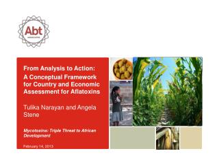 From Analysis to Action:
