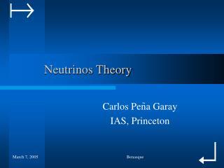 Neutrinos Theory