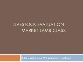 Livestock Evaluation Market Lamb class