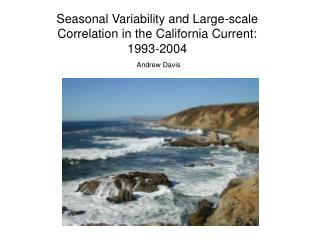 Seasonal Variability and Large-scale Correlation in the California Current: 1993-2004
