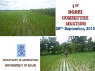 1 st BGREI  Committee  MEETING 26 TH  September, 2012