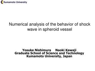 Numerical analysis of the behavior of shock wave in spheroid vessel