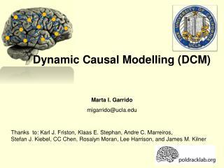 Dynamic Causal Modelling (DCM)