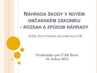 Přednáška pro ČAK Brno  16. ledna 2013