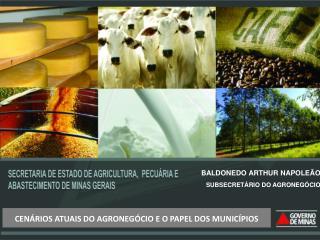 BALDONEDO ARTHUR NAPOLEÃO SUBSECRETÁRIO DO AGRONEGÓCIO
