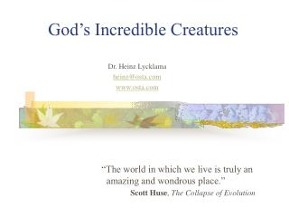 God�s Incredible Creatures