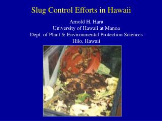 Slug Control Efforts in Hawaii