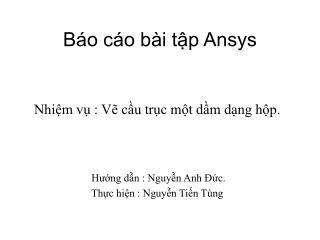 B�o c�o b�i t?p Ansys