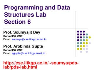 Programming and Data Structures Lab Section 6