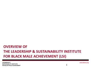 Overview of  The Leadership & Sustainability Institute for Black Male Achievement (LSI)