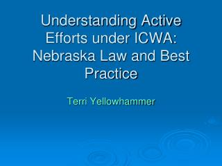 Understanding Active Efforts under ICWA: Nebraska Law and Best Practice