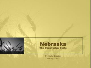 Nebraska The Cornhusker State