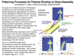 Patterning Processes for Polymer Brushes to Direct Assembly