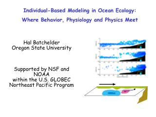 Individual-Based Modeling in Ocean Ecology: Where Behavior, Physiology and Physics Meet