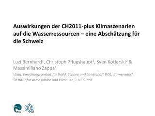 Luzi Bernhard 1 ,  Christoph  Pflugshaupt 1 , Sven Kotlarski 2  & Massimiliano Zappa 1