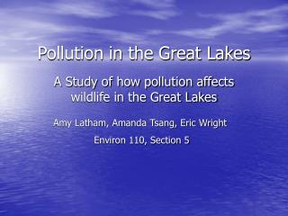 Pollution in the Great Lakes