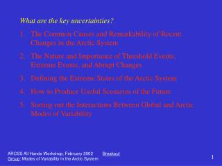 What are the key uncertainties?