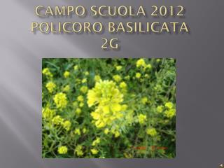 Campo scuola 2012  policoro basilicata   2G