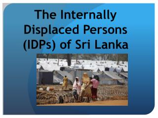 The Internally Displaced Persons (IDPs) of Sri Lanka