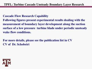 TPFL: Turbine Cascade Unsteady Boundary Layer Research