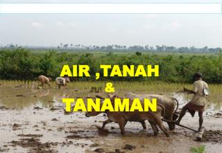 AIR  , TANAH & TANAMAN (Prof.Dr.Ir.Soemarno, M.S.) Oktober 2008