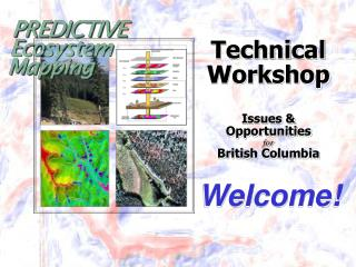 Technical Workshop Issues & Opportunities for British Columbia