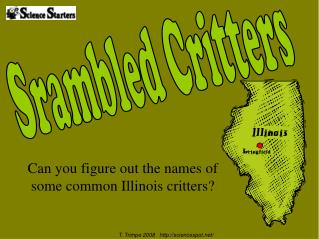 Can you figure out the names of some common Illinois critters?