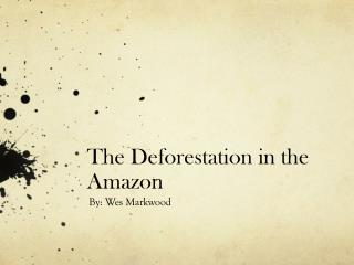 The Deforestation in the Amazon