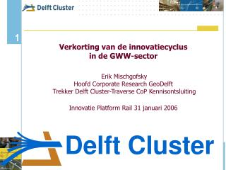 Delft Cluster