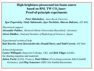 High-brightness picosecond ion beam source  based on BNL TW CO 2  laser: